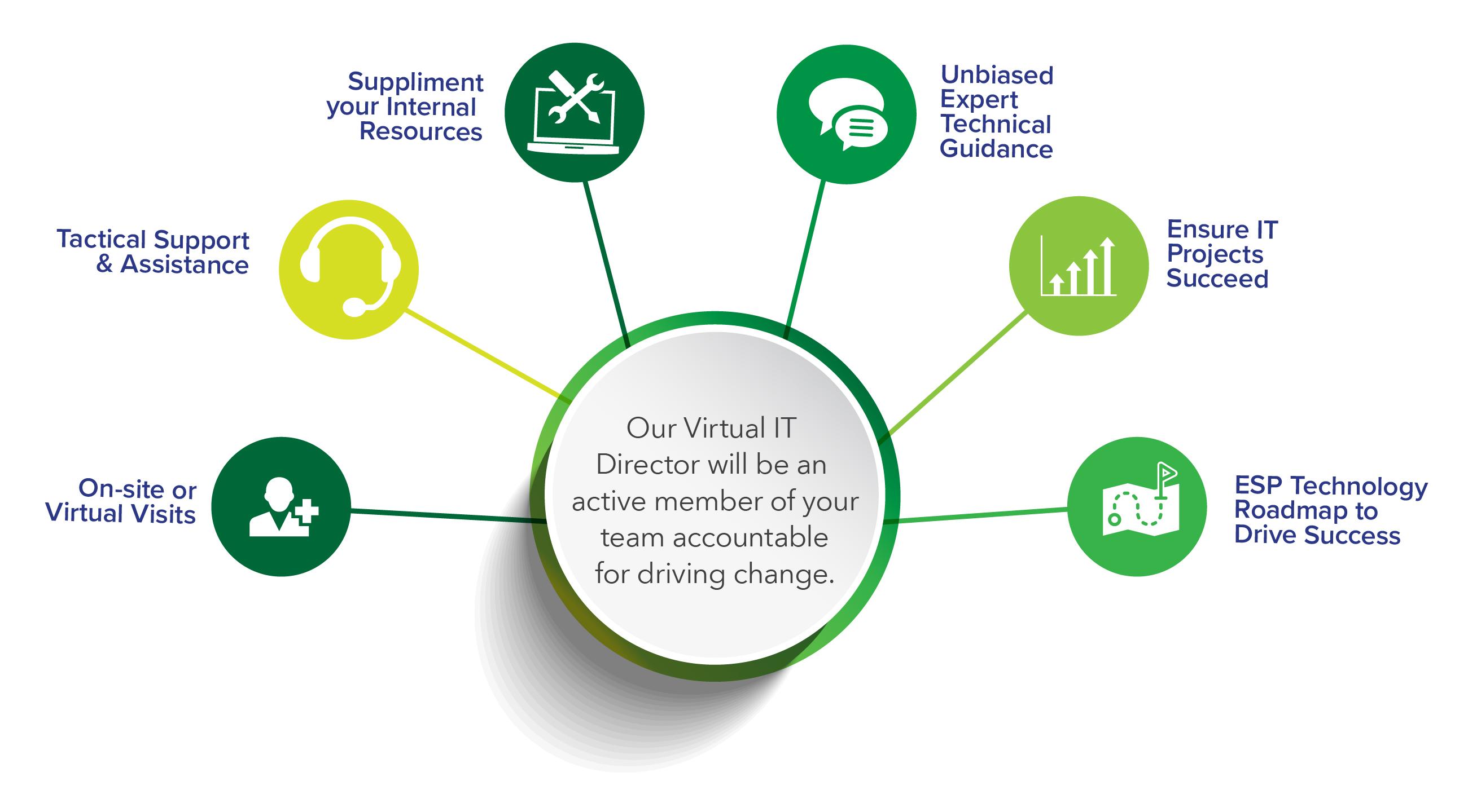 Virtual IT Director